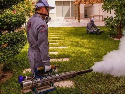 شركة مكافحة حشرات شرق الرياض – 0508001277